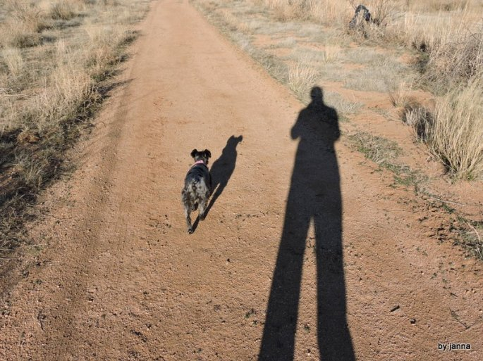 Two shadows, one long, one short on our morning walk.